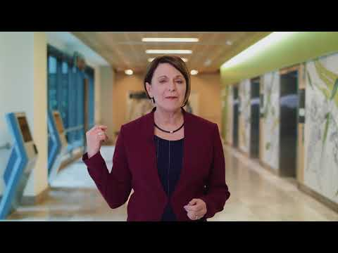 Outpatient Journey At The New Royal Adelaide Hospital