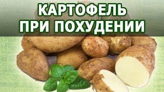 Картофель польза при похудении