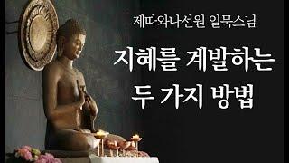 지혜를 계발하는 두 가지 방법ㅣ일묵스님ㅣ2020.10.18 초기불교 제따와나선원 정기법회