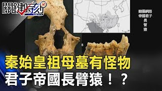 秦始皇祖母墓有「怪物」 君子帝國長臂猿到底是什麼!? 關鍵時刻 20180626-5 馬西屏 傅鶴齡