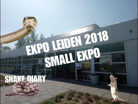 Reptile expo Leiden Netherlands Beurs 2018