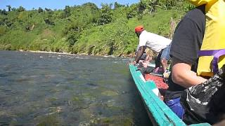 Long boat getting stuck on the navua river day 49