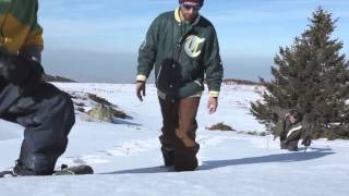 Small Foot: The Inflatable Snowshoes vs Conventional snowshoes Thumbnail