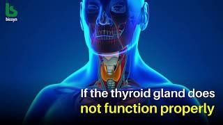 Informativer Film zu Selen und Schilddrüse - Video von Hashem Al-Ghaili