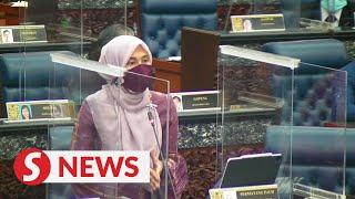 Do not rush to open the borders, Nurul Izzah urges govt
