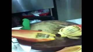 Cooking Vietnamese