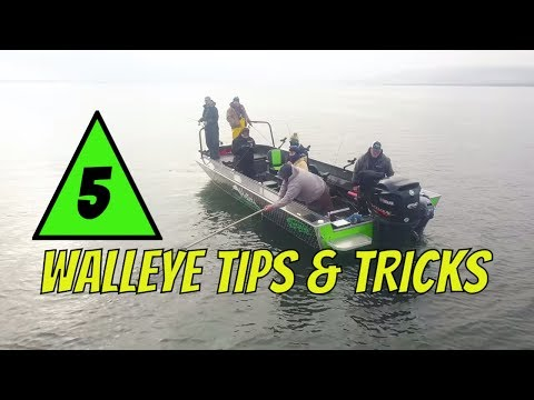 5 Walleye Fishing Tips & Tricks To Become A Better Walleye Angler 🐟