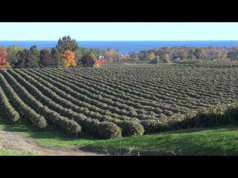 Lake Erie Region-Grape Belt Natural History.mov
