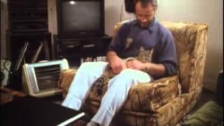 BBC Koshki 5 2002 XviD DVDRip
