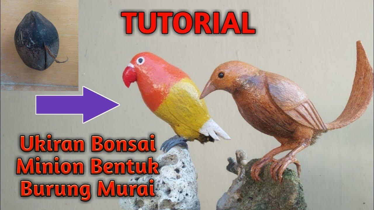 Bahan Bonsai Minion Ukir Burung Murai Youtube