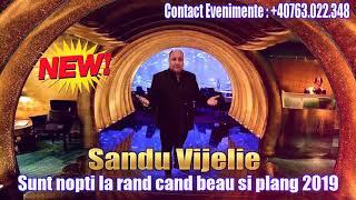 Sandu Vijelie - Sunt nopti la rand cand beau si plang 2019