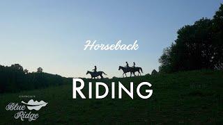 Horseback in Blue Ridge Mountains