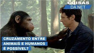 Cruzamento entre animais e humanos é possível