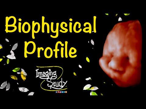 Fetal Biophysical Profile Imaging Study Lecture