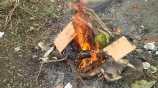 Bajan Roast Breadfruit