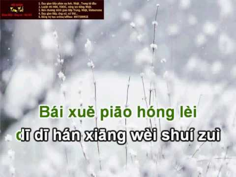 Mai hoa lệ - Luyện hát 梅花泪 Sing Chinese Song with Pinyin