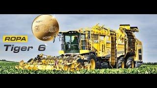 Nowy Kombajn Buraczany Ropa Tiger 6 !!! Trailer