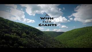 A Wish for Giants - Teaser Trailer