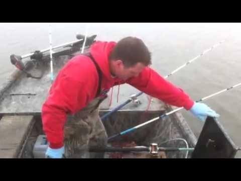 Oklahoma Rod & Reel Catfishing