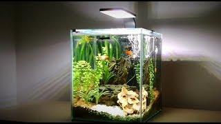 Design Aquarium Kast : How to nano aquarium