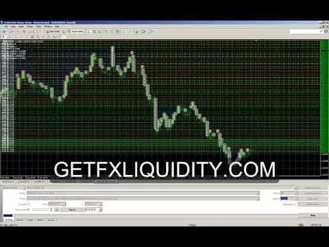 Liquidity Forex Robot Video