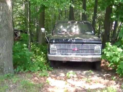 Chevy trucks in the woods