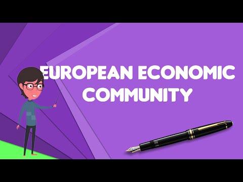 What Is European Economic Community?, Explain European Economic Community