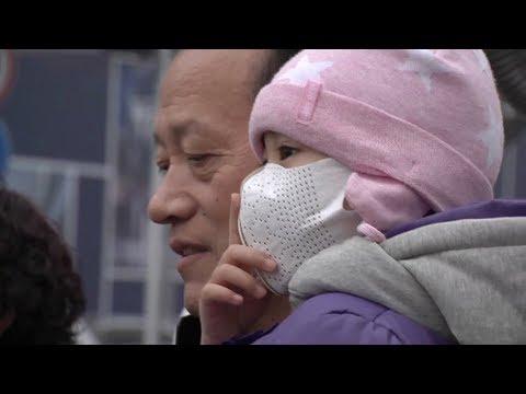 WHO   Air pollution and child health: prescribing clean air
