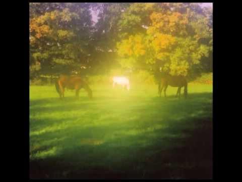 Valerie Webb & Paul LaBrecque - Amish Nights