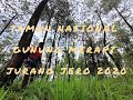 Suasana Pagi Hari Di Taman Nasional Gunung Merapi Jurangjero Magelang  Mp3 - Mp4 Download
