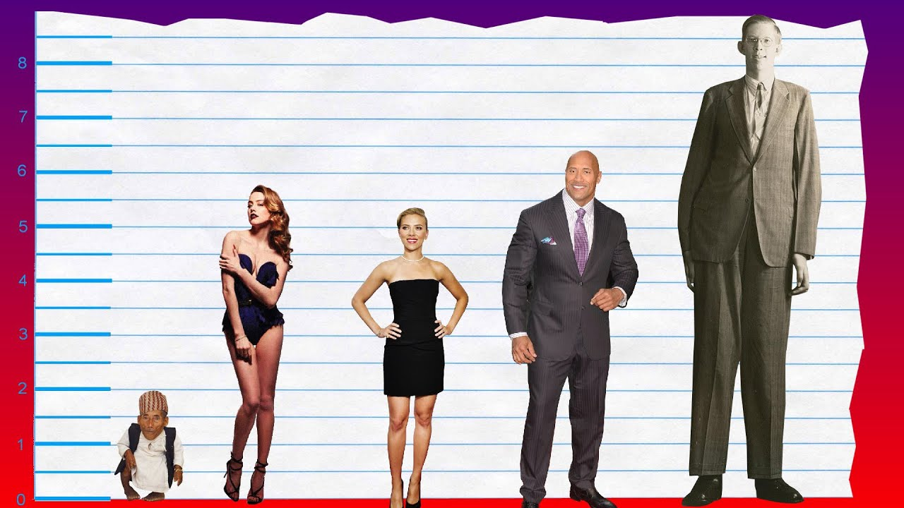 How Tall Is Amber Heard? - Height Comparison! - YouTube
