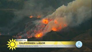 """Branden i Kalifornien sprider sig: """"Folk stannar kvar för länge i sina hus""""  - Nyhetsmorgon (TV4)"""