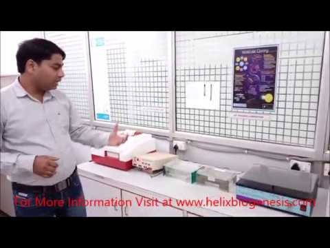 Introduction To Biotech Laboratory