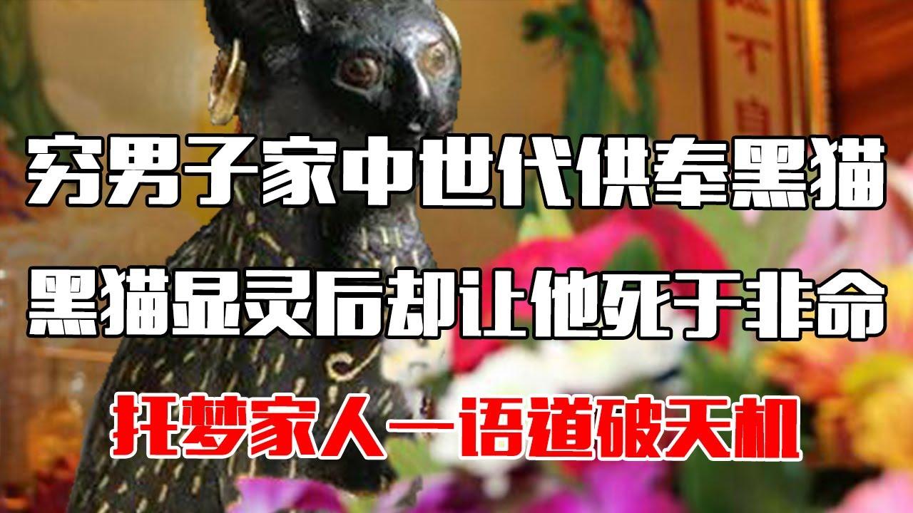 【中国故事】 穷男子家中世代供奉黑猫,黑猫显灵后却让他死于非命,托梦家人一语道破天机