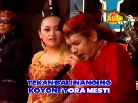 Jamu Pegel Melarat    Paijo ft Dewi  Nirwana Campursari
