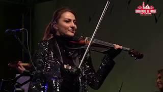 Misirlou - Amadeus Electric Quartet & Band