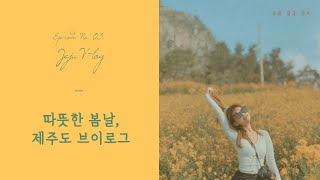 제주도 브이로그 3 /고기국수/☕제주카페/도민추천맛집/…