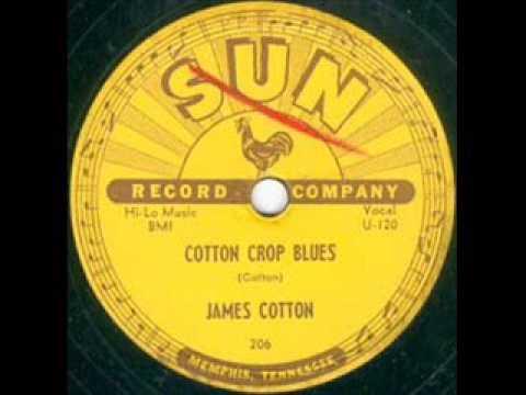 James Cotton Cotton Crop Blues  SUN 206  JB