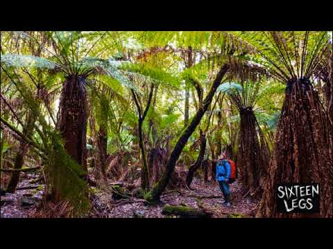 SIXTEEN LEGS - Tasmanian premiere screening - ABC Radio interview
