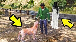 მკვდარი ძაღლის მოჩვენება Gta 5 ქართულად