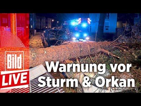 Unwetter-Tief Burghild wütet in Deutschland – BILD LIVE