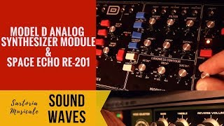 Moog Wind - Model D Synthesizer and Space Echo RE 201