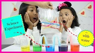 SCIENCE EXPERIMENTS FOR KIDS WITH WATER ♥ LAVA LAMP, LEAK PROOF BAG, PEPPER WATER EXPERIMENTS SCHOOL