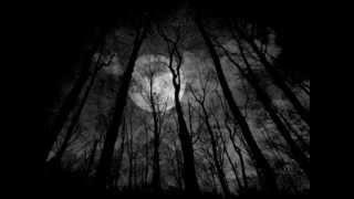 Paradise lost - Beneath black skies