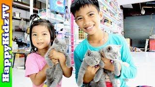 ขี่สกูตเตอร์ ไปเจอ น้องแมว สุดน่ารัก พี่แชมป์น้องปาน Happykidztv