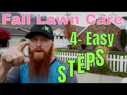 DIY How to Care for your Lawn in the fall. 4-steps for fall lawn care
