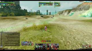 Archeage NA: Slow/Stuttery Endless Arrows and Huge Skill Delay. (Kraken)
