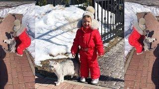Бородина и Тея гуляют во дворе Теона обижает кота