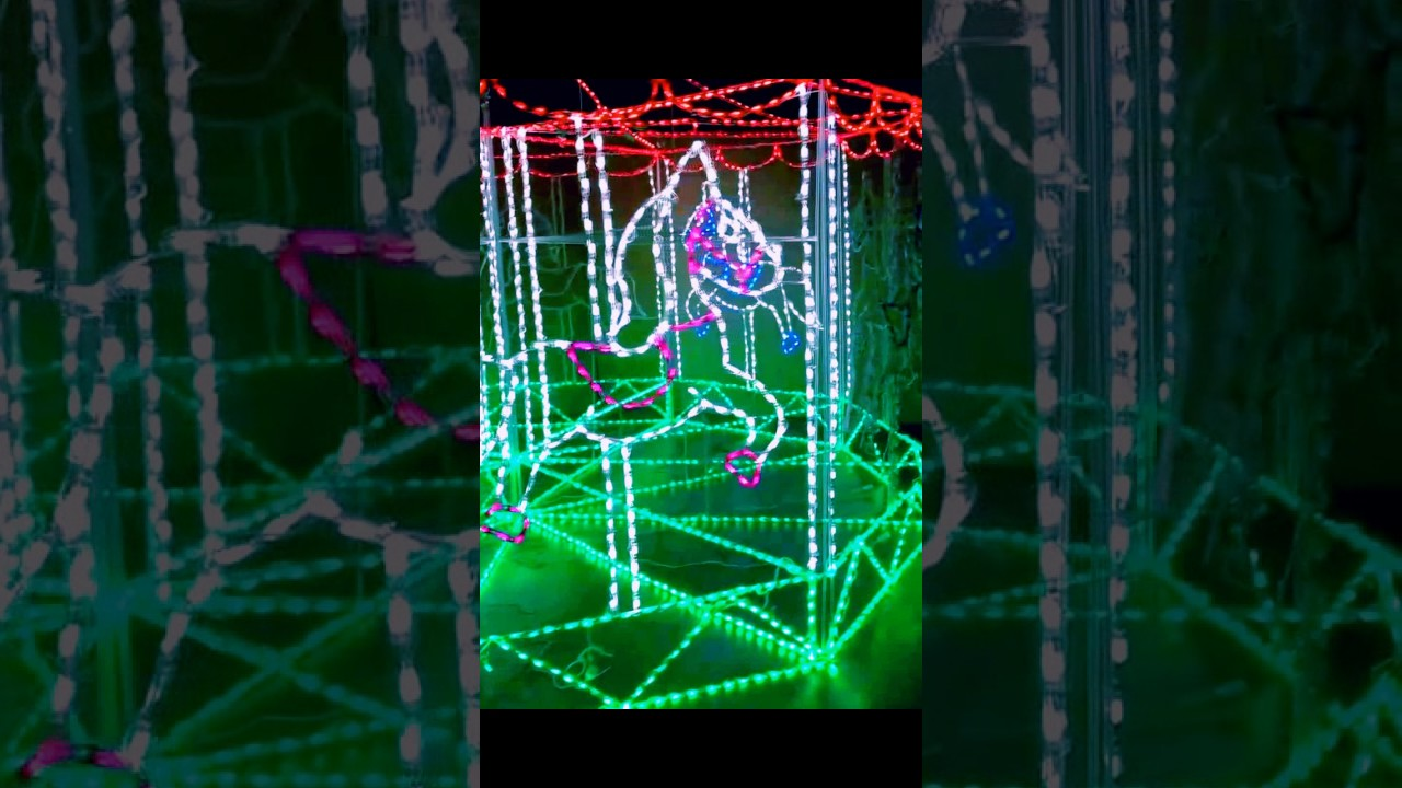 Christmas Done Bright.Copy Of 3d Carousel Christmas Done Bright