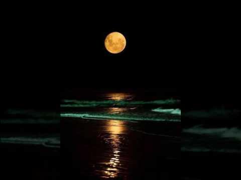Larry Dunn - Carolina Moon